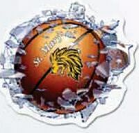 """313709534-183 - WindowCrashers - Basketball Clear Poly Decals (11 1/2""""x12 3/4"""") - thumbnail"""