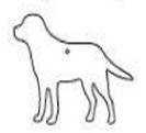995666139-820 - Paper Scents™ Air Freshener (Dog) - thumbnail