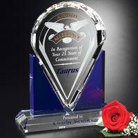 "992554762-133 - Distinction Award 9"" - thumbnail"