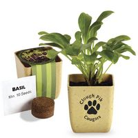 744434729-159 - Flower Pot Set w/Basil Seeds - thumbnail