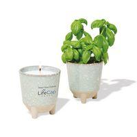 156335491-112 - Modern Sprout Glow & Grow Live Well Gift Set - Blue Green: Herb Garden w- Basil Seeds  - thumbnail